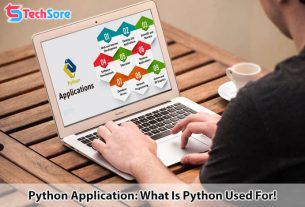 Python Application: What Is Python Used For!